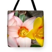 Yellow Tulips Art Prints Pink Tulips Spring Florals Baslee Troutman Tote Bag