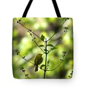 Yellow Warbler In A Tree 2 Tote Bag