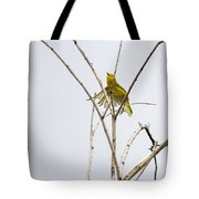 Yellow Warbler In Flight Tote Bag