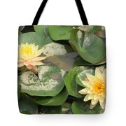 Yellow Water Lillies Tote Bag