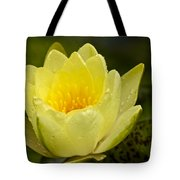Yellow Water Lilly Tote Bag