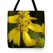 Yellow Wingstem Tote Bag