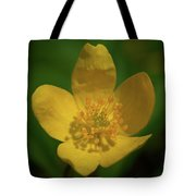 Yellow Wood Anemone 1 Tote Bag