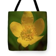 Yellow Wood Anemone 2 Tote Bag