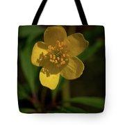 Yellow Wood Anemone 3 Tote Bag
