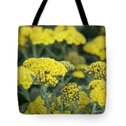 Yellow Yarrow Tote Bag