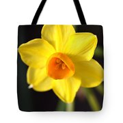 Yellows Of Jonquils Tote Bag