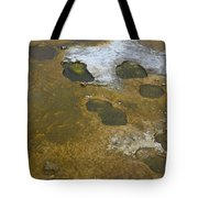 Yellowstone #1 Tote Bag