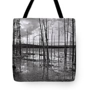 Yellowstone 145 Tote Bag