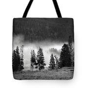 Yellowstone 157 Tote Bag