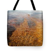Yellowstone Colors #7 Tote Bag