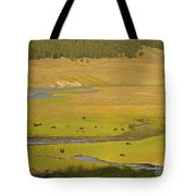 Yellowstone Bison 2 Tote Bag