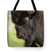 Yellowstone Bison Portrait Tote Bag by Sandra Bronstein