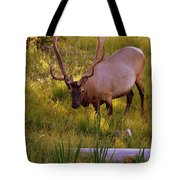 Yellowstone Bull Tote Bag