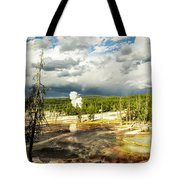 Yellowstone Colors #3 Tote Bag