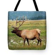 Yellowstone Elk Tote Bag