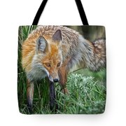 Yellowstone Fox Tote Bag