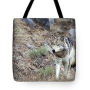 Yellowstone Grey Wolf Tote Bag