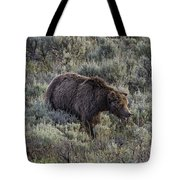 Yellowstone Grizzly Tote Bag