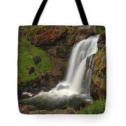 Yellowstone Moose Falls Tote Bag