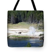 Yellowstone Park Bison In August Tote Bag