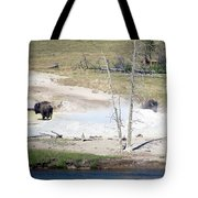 Yellowstone Park Bisons In August Tote Bag