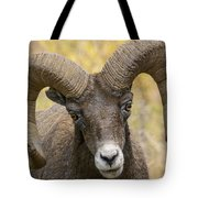 Yellowstone Ram Tote Bag