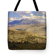Yellowstone View Tote Bag