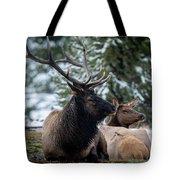 Yellowstone Wild Tote Bag