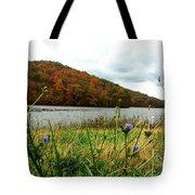 Yellowwood Lake, Southern Indiana Tote Bag