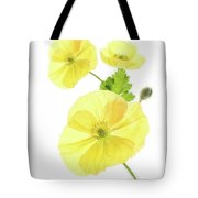 Beauty And Translucency Of Poppies. Tote Bag