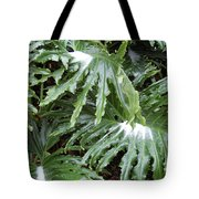 Yes Snow In Florida Tote Bag