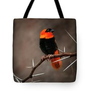 Yikes Spikes - Red Bishop Weaver Bird Tote Bag