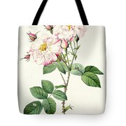 York And Lancaster Rose Tote Bag by Pierre Joseph Redoute