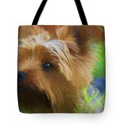 Yorkie In The Grass - Painting Tote Bag