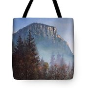 Yosemite Dawn Detail Tote Bag