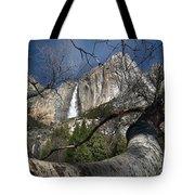 Yosemite Falls Tree Tote Bag
