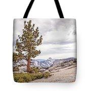 Yosemite Tree Tote Bag