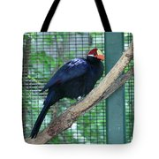 You Are My Audience - Bird Perched Tote Bag