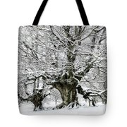 You Cannot Pass Tote Bag