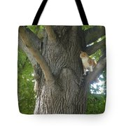 You Cant Catch Me Tote Bag