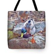 You Go First - Male And Female Mallard Ducks Tote Bag