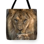You Got My Attention Tote Bag
