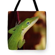 You Know Better Tote Bag