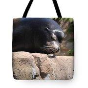 You Like My Show? Tote Bag