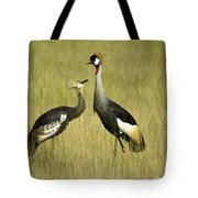 You Must Be My Mother Tote Bag