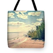 You Walked Away - Wisconsin Tote Bag