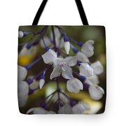 You Were Born With Wings  Tote Bag