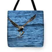 Young Bald Eagle II Tote Bag
