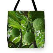 Young Breadfruit Tote Bag